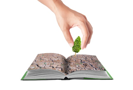 Open 3D book with hand drop small treel on cracked field,eco  conceptual idea photo