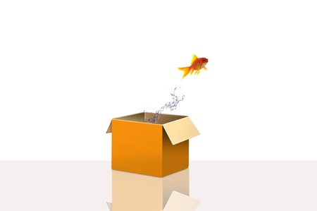 alter ego: Gold fish flying out side the box for concept idea