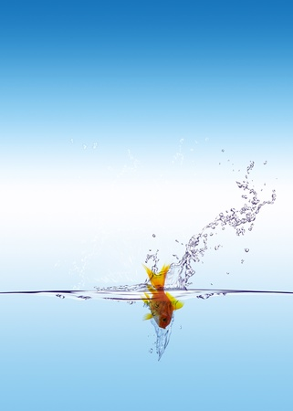Goldfish jumping down with sky background photo