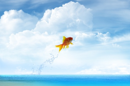 tank fish: Goldfish jumping up with sky background Stock Photo