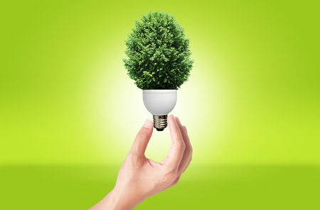 緑の環境の概念のための緑の木とランプを持っている手
