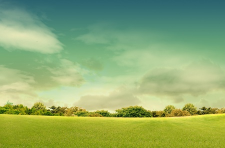 Spring landscape with forrest, tree,green grass and field background photo