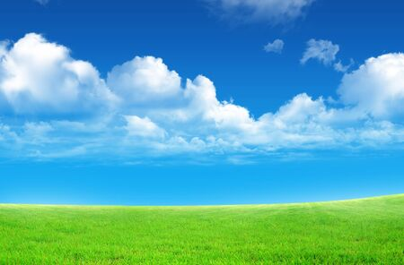 fleecy: Green field and sky blue with white cloud