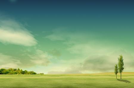 Paesaggio con alberi di campo Archivio Fotografico - 10504188