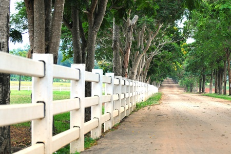 open gate: white country fence