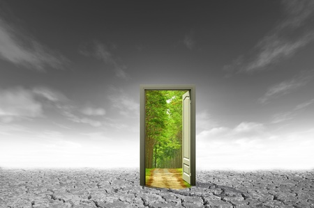 Door open to the new world, for environmental concept and idea Stock Photo - 10785501