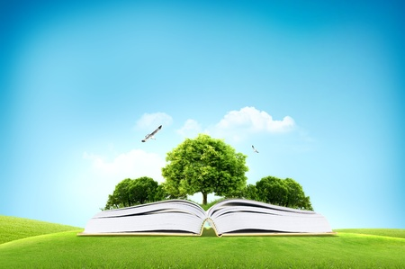 mystical forest: Book and big green tree for traveling and eco concept