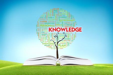 knowledge: Buchen UND WACHSEN Wort Wolke TREE f�r Business-Konzept Lizenzfreie Bilder