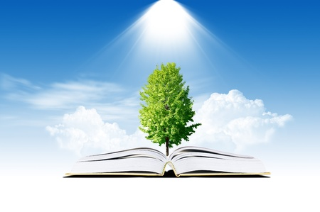 Book with tree photo