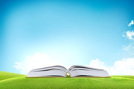 dream land: Open book on he green grass field over the blue sky