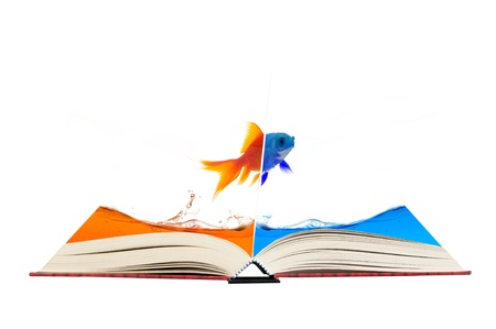 Open magic book with gold fish change color Stock Photo - 11568831