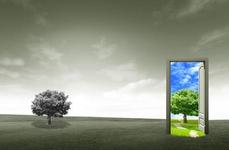 Puerta abierta en el campo verde para el concepto de medio ambiente y la idea