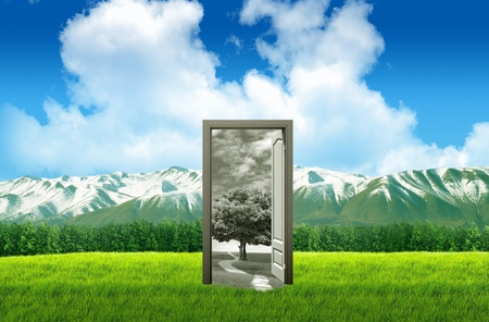 Door open on green field for environmental concept and idea Stock Photo - 11568662