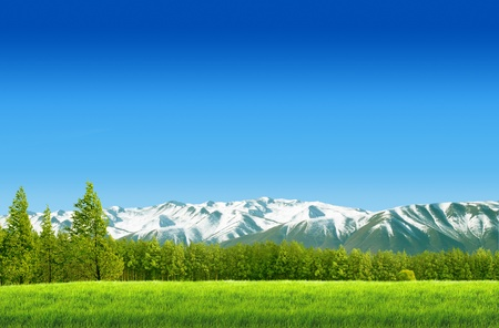 wood lawn: Moutain on green field landscape with blue sky