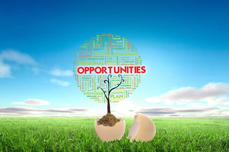 Business growth concept with tree cloud text in the egg photo