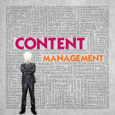 business roles: Business word cloud for business concept, content management