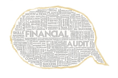 performed: Wordcloud on texture paper speech bubble, Financial Audit Stock Photo