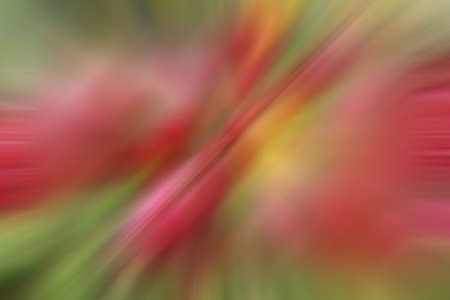 Picture was blurred to be abstract background photo