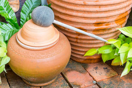 made of water: Water Dipper made from coconut shell and Clay pot