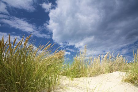 dunes near the sea with storm clouds and a blue sky
