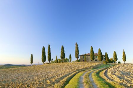 Typical Tuscan landscape in the hills with a blue sky