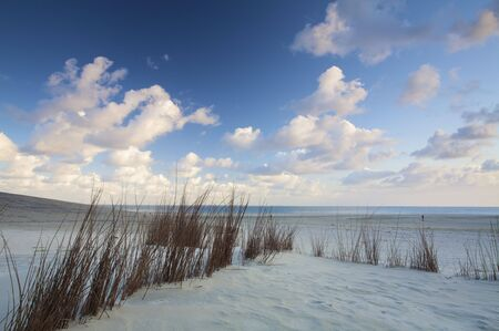 Dunes and the beach at sunset in Holland with a blue sky and white clouds Stock Photo