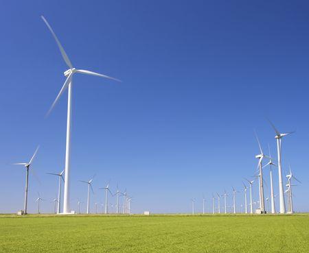 watts: wind turbines farm in a green field producing energy