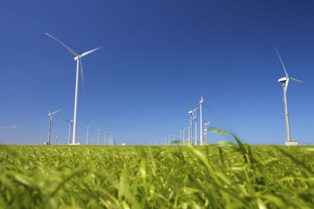 wind turbines in a green field producing clean energy