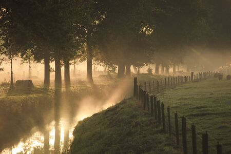 A landscape with fog and a sunrise in the Netherlands photo