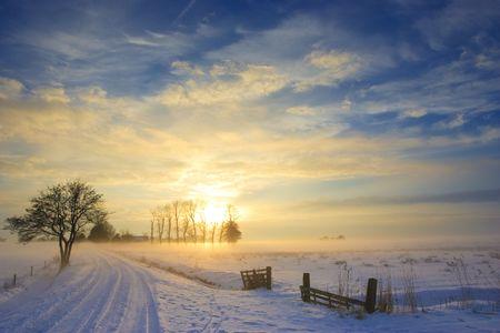silhouette arbre hiver: paysage coucher de soleil en hiver avec la neige en Hollande