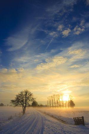 silhouette arbre hiver: paysage coucher de soleil en hiver avec la neige en Hollande Banque d'images