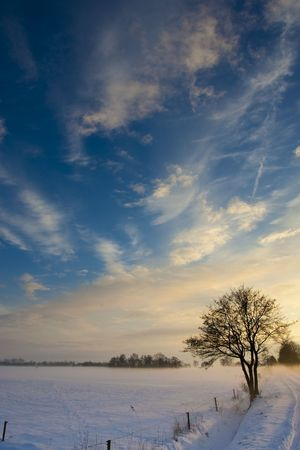 sunset landscape in winter with snow in Holland photo