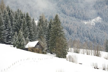 Mountain cabin in winter in a forest covered with snow photo
