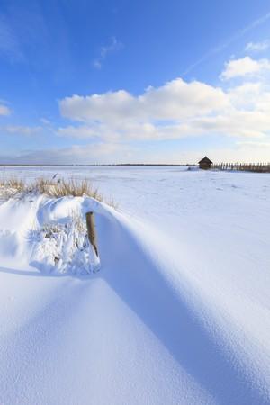 Fresh snow in winter in a Dutch landscape Stock Photo - 7421681