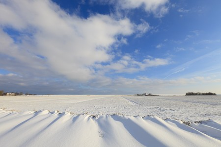 Fresh snow in winter in a Dutch landscape Stock Photo - 7421670