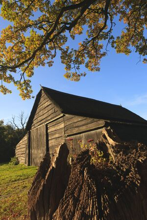 Autumn landscape with barn and goat photo