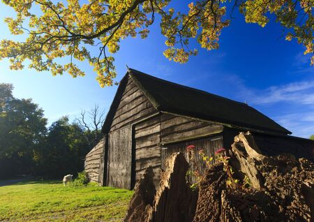 Autumn landscape with barn and goat Stock Photo - 7704200