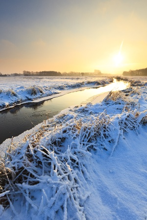 Winter landscape with snow Stock Photo - 8826227