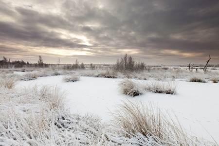 Winter storm over landscape with snow photo