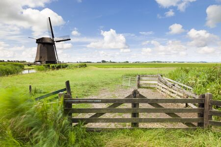 Dutch windmill in fresh green field in summer Stock Photo - 8826282