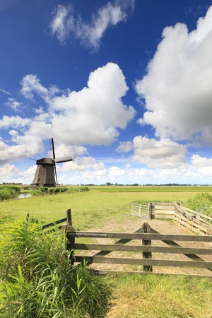 Dutch windmill in fresh green field in summer