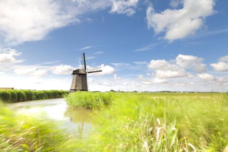Dutch windmill in fresh green field in summer photo