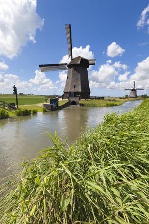 Niederländische Windmühle in einem frischen grünen Feld im Sommer mit einem blauen Himmel Standard-Bild
