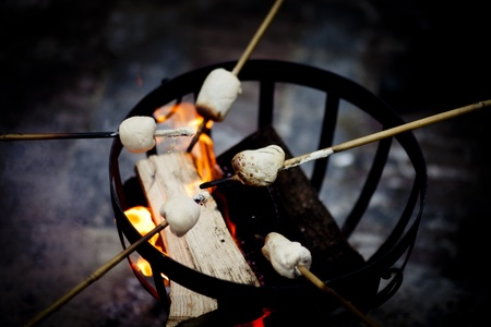 Marshmallow on a campfire