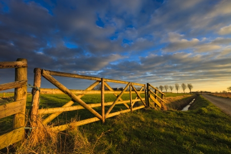 Schöner Sonnenuntergang auf einem Feld im Sommer Standard-Bild - 13874945