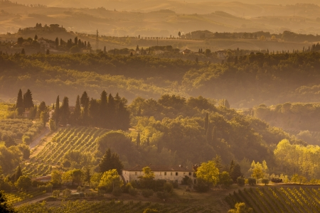 Landscape in Tuscany at sunset in summer Standard-Bild - 13874954