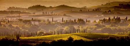 tuscany landscape: Landscape in Tuscany at sunset in summer