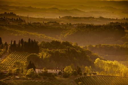 Landscape in Tuscany at sunset in summer Stock Photo - 13874986