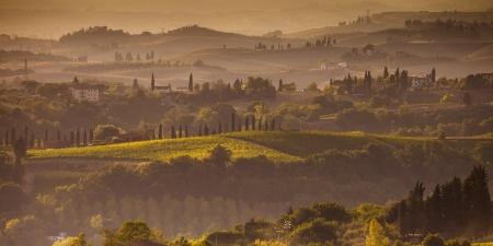 Landschaft in der Toskana bei Sonnenuntergang im Sommer