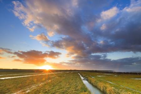 Feld ein Sonnenuntergang mit grünem Gras Standard-Bild